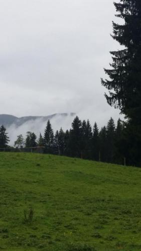 Bergwandern-2017-015