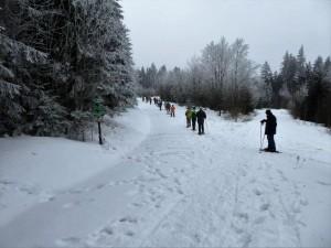 schneeschuhwandern februar 2017009